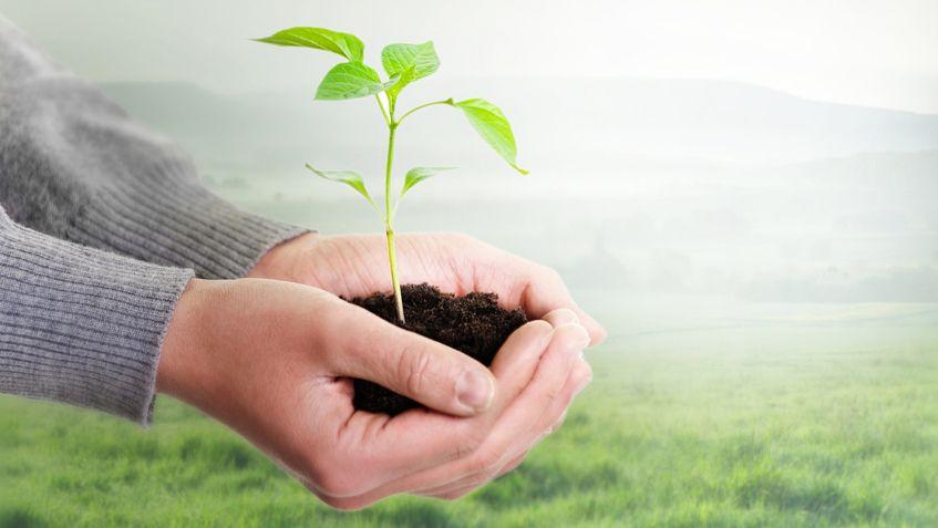 """Marktmonitor """"Sustainable Insurance Industry"""""""