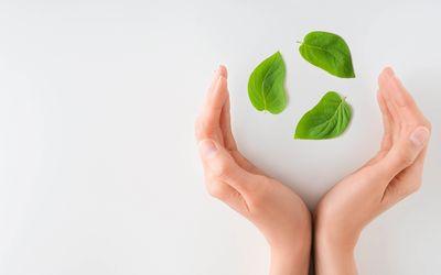 Nachhaltigkeit im Risikomanagement