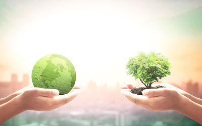 Themendossier 8/2021: Aktuelle Zahlen & Fakten zur Nachhaltigkeit