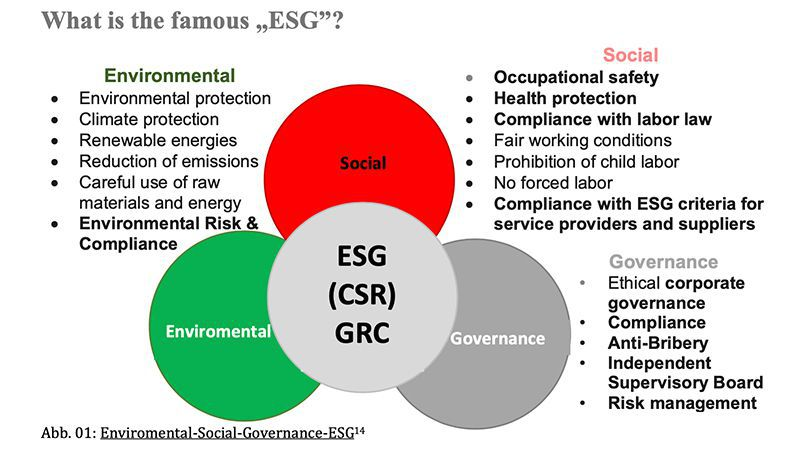 What is the famous ESG