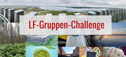 LF-Gruppen-Challenge