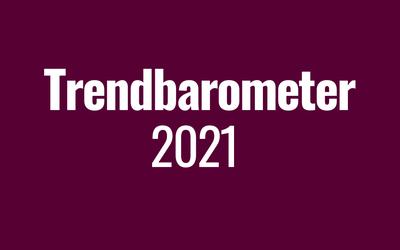 Insight Trendbarometer: Cybergefahren, Big Data & Predictive Analysis sind die Branchentrends 2021
